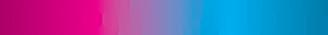 Discover Audit Logo